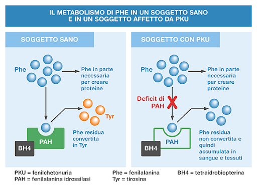 Controindicazioni della Spirulina - Spirulina.it